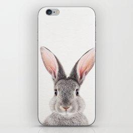 Baby Rabbit, Baby Animals Art Print By Synplus iPhone Skin