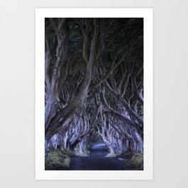 The Dark Hedges III Art Print