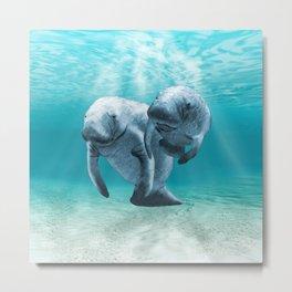 Two Manatees Swimming Metal Print