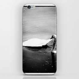 Two swans on lake Huron iPhone Skin