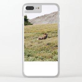 Mr.Wilcox Clear iPhone Case