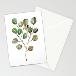Silver Dollar Eucalyptus – Green Palette Stationery Cards