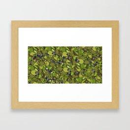 Blueberry Bushes Framed Art Print