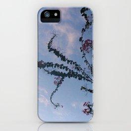 Skyline Euphoria iPhone Case