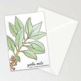 tea botanicals | Yerba Mate // South American herbal Stationery Cards