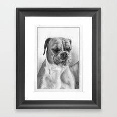 Chloe the Boxer Dog Framed Art Print