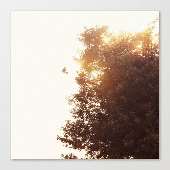 Nuevo amanecer Canvas Print