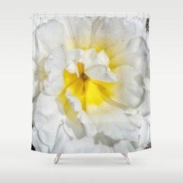 Flower like sunshine on snowy mountains Shower Curtain