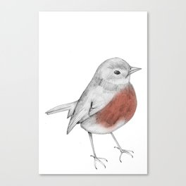 Lucky Robin Canvas Print