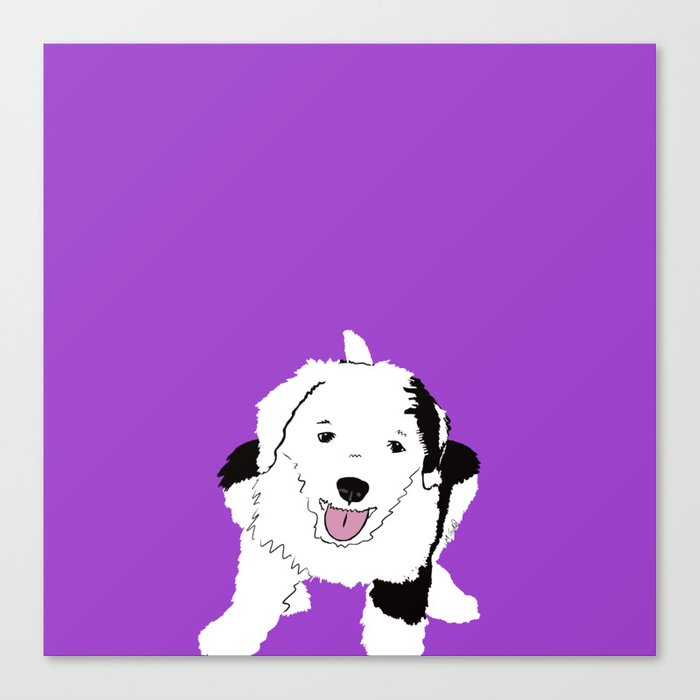 Gypsy The Sheepadoodle Canvas Print