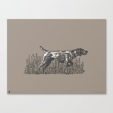 Pointer in Color Canvas Print