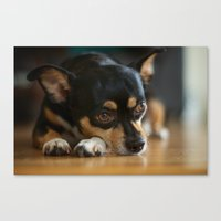 charlie Canvas Prints featuring Charlie by Leandro