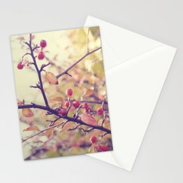 Berry Christmas Stationery Cards
