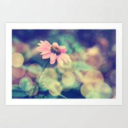 Romance. Golden dust pink daisy with bokeh. Art Print