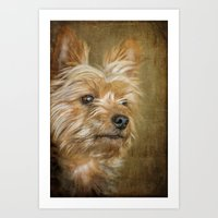 yorkie Art Prints featuring Yorkie by CathyLICreations