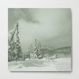 Winter day3 Metal Print