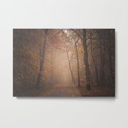 calm autumn Metal Print