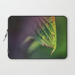 An accent tone Laptop Sleeve