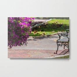 quiet spring Metal Print