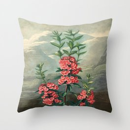 Pink Floral The Narrow-leaved Kalmia : Temple of Flora Throw Pillow