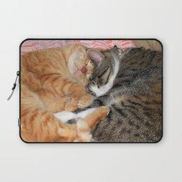 Nap Buddies Laptop Sleeve