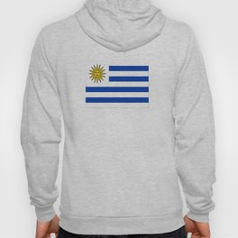 flag of Uruguay-Uruguyan,montevideo,spanish,america,latine,Salto,south america,paysandu,costa,sun,be Hoody