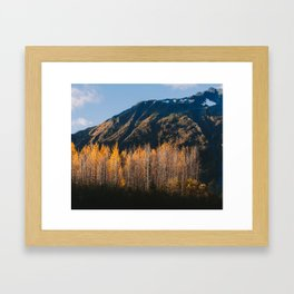 Autumn in Kenai Fjords National Park II Framed Art Print