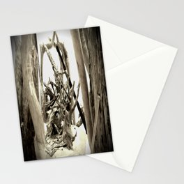 Driftwood (B&W) Stationery Cards