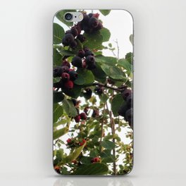 Beautiful Wild Berries iPhone Skin