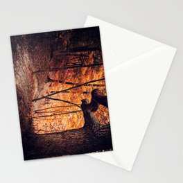 Forest of Fire Stationery Cards