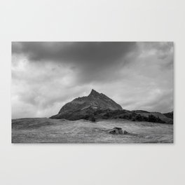 Alpine summer, Austria Canvas Print