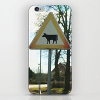 cows iPhone & iPod Skins featuring Attention cows by Falko Follert Art-FF77
