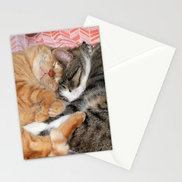 Nap Buddies Stationery Cards