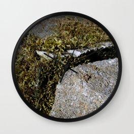 Nature's Mossenger Wall Clock