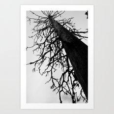 Dead of Winter Art Print
