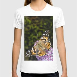 Painted Lady Butterfly 0923 T-shirt
