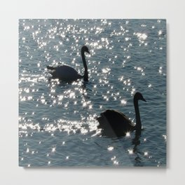 The Sparkle of the Swans Metal Print