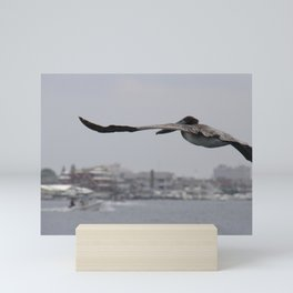 Pelican Landing Strip Mini Art Print