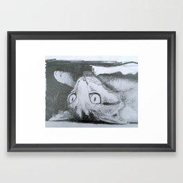 Fergus under the couch Framed Art Print