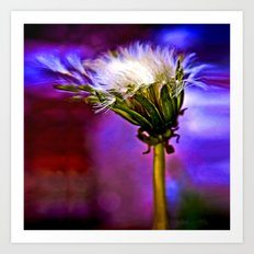 Only a dandelion  Art Print