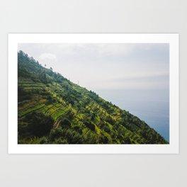 Wine mountains Art Print