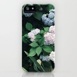 Hydrangeas in the Yard iPhone Case