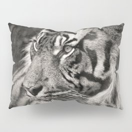 The mysterious eye of the tiger. BN Pillow Sham