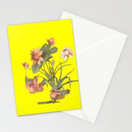 Q_0001  Stationery Cards