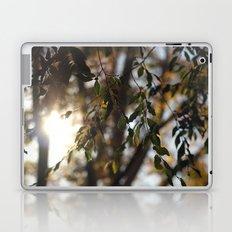 Leaves and Light Laptop & iPad Skin