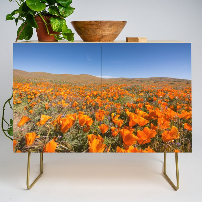 Blooming poppies in Antelope Valley Poppy Reserve Credenza