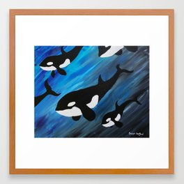 Orca Pod Framed Art Print