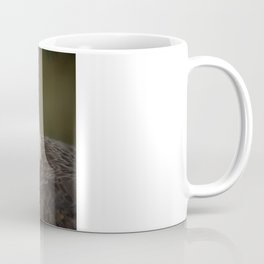 Columbia - Bald Eagle Coffee Mug
