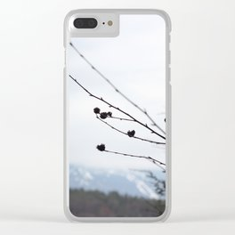 Mansfield Clear iPhone Case