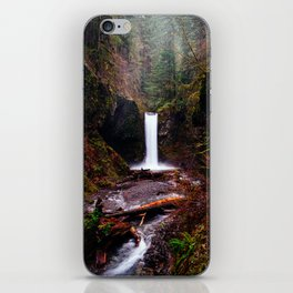 Wiesendanger Falls, Oregon iPhone Skin